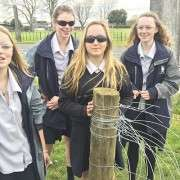Young Farmers - Recent News  -  Te Awamutu College